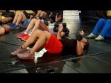 WWE Power Series: Triple H - Upper Body 1