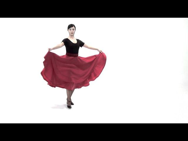 Academia de Baile - Chacarera zarandeo (Clase 12)
