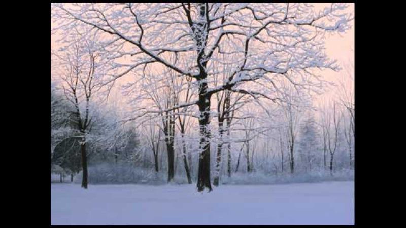 Heidi Anne Breyer and Alexander Volkov: And Winter
