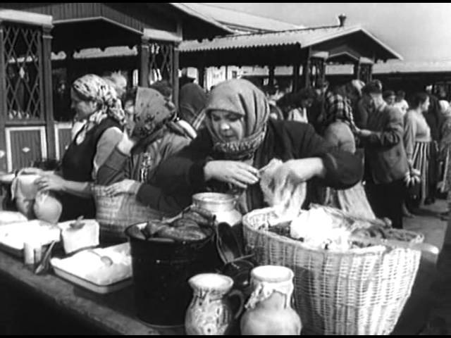 Необыкновенное путешествие Мишки Стрекачева (1959) Полная версия