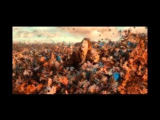 Thorin's Destiny.(part 1 ) Thorin Oakenshield