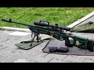Снайперские винтовки СВД, СВД-С и СВ-98