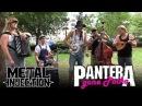 PANTERA Cemetery Gates Gone Polka by STEVE 'N' SEAGULLS Metal Injection