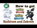 Как поймать Reshiram и Zekrom в Pokemon ORAS