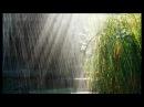 Прогулка под дождём. /Walking in the Spheeris /