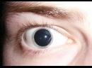 ЛСД взгляд изнутри - Inside LSD 2009 Документальный фильм National Geographic