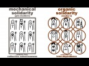 Durkheims Mechanical and Organic Solidarity what holds society together