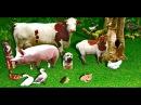 говорят животные 3