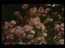 Death by flowers from la faute de l'abbé mouret by georges franju