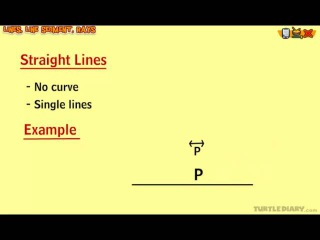 Lines - Perpendicular, Intersecting, Parallel - Math Lesson for Grade 3