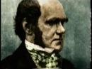Крах теории Дарвина доказательства ученых