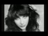 Kate Bush - In Search Of Peter Pan