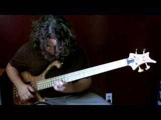 Красивое соло на бас гитаре