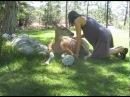 Helping Our Wild Deer Friend Eva