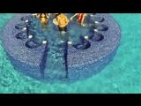 Foncho - Waya Waya (Official Video)