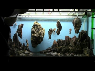 Allestimento acquario fantasy Aquarium Setup - Aquascape https://vk.com/natureaqua_fish