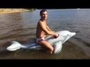 Александр Пистолетов - Из России в Украину (соло на дельфине)