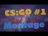 CS:GO Montage #1 | В мире диких животных))00)