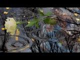 Вальс дождя Фредерик Шопен (Осенний дождь)