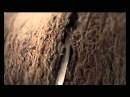 Реклама Баунти Райское Наслаждение Bounty Commercial 2011