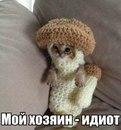 Майя Любицкая фото #21
