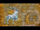 [WarCraft] История мира Warcraft. Глава 22: Война древних. Духи Калимдора и план Иллидана.