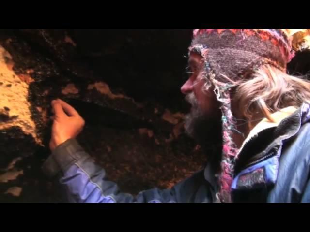 Откуда берется мумиё и как его добывают