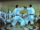 Семинар по Каратэ Шотокан - Хироши Шираи в Польше 1992 год - часть 2 Ippon kumite
