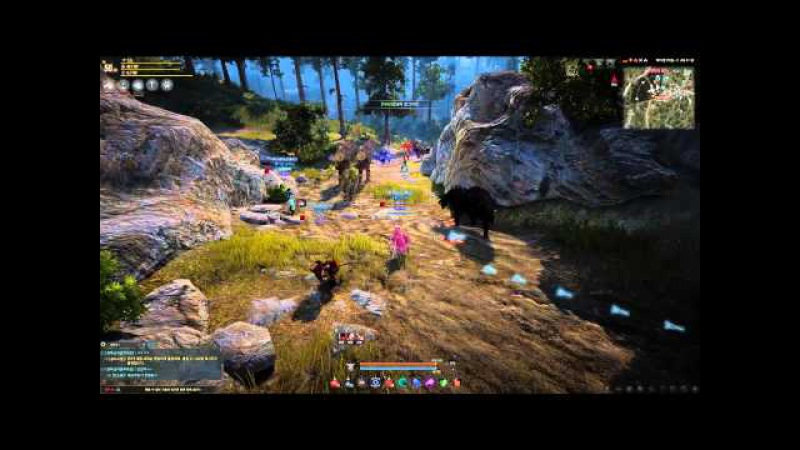 Black Desert Online New GvG Ruleset and Laggy Siege
