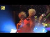 Exlusive new hot Best global night club Amnesia ibiza MATINEE