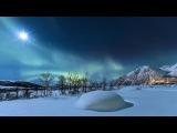 Есть красота своя в ЗИМЕ | Зимние пейзажи | Дикая лесная сказка / HD