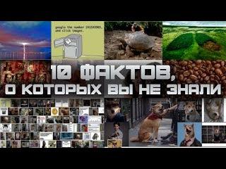 10 ИНТЕРЕСНЫХ ФАКТОВ, О КОТОРЫХ ВЫ НЕ ЗНАЛИ (выпуск #1)