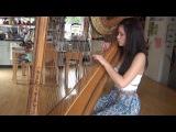 Let Her Go - Passenger (Harp Cover)