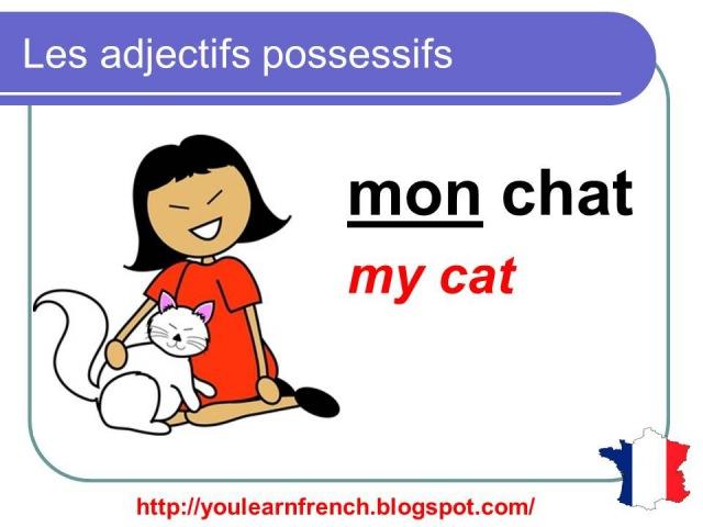 French Lesson 18 - Possessive adjectives - Les adjectifs possessifs - Adjetivos posesivos en francés