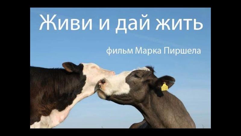 Живи и дай жить другим Русская Озвучка