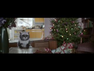 Приключения кота в Рождественскую ночь!)