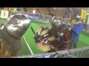 3 vs 3 ♀ féminin Tournoi des Flandres (Tourcoing) 2015