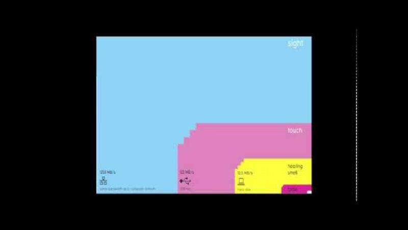 The beauty of data visualization David McCandless