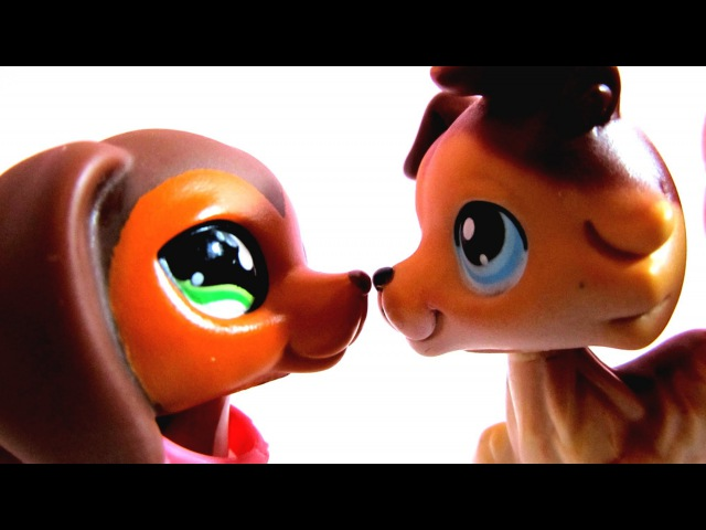 Littlest Pet Shop: Popular (Episode 18: Savannah) [SEASON 2 PREMIERE - Part 1/2]