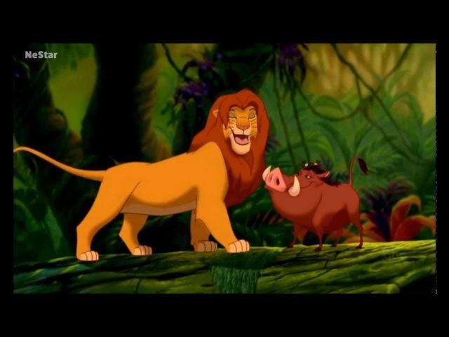 Хакуна матата Тимон и Пумба м ф Король лев