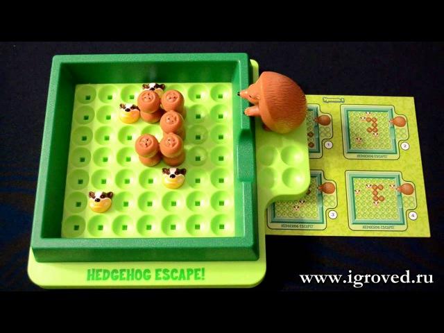 Спасите ёжиков! Обзор настольной игры-головоломки от Игроведа