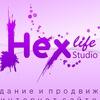 Студия web-дизайна Hexlife. Создание и продвижен