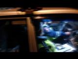 Люди в форме ДПС пытаются посадить в машину девушек и увезти. Пермь, Комсомольский проспект. 20 сентября 2015. ВИДЕО