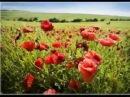 Песни войны - Над Малаховым курганом тишина...