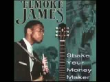 Elmore James - Shake Your Money Maker.