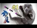 1 Мой Кот - идиот подборка