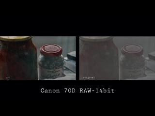 Canon 70D ML RAW-video