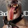 Bad-JD