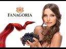 Винодельня Фанагория: секреты виноделов. Как производится вино, чача, коньяк, шампанское