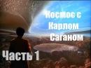 Космос с Карлом Саганом часть 1 Берега Космического океана